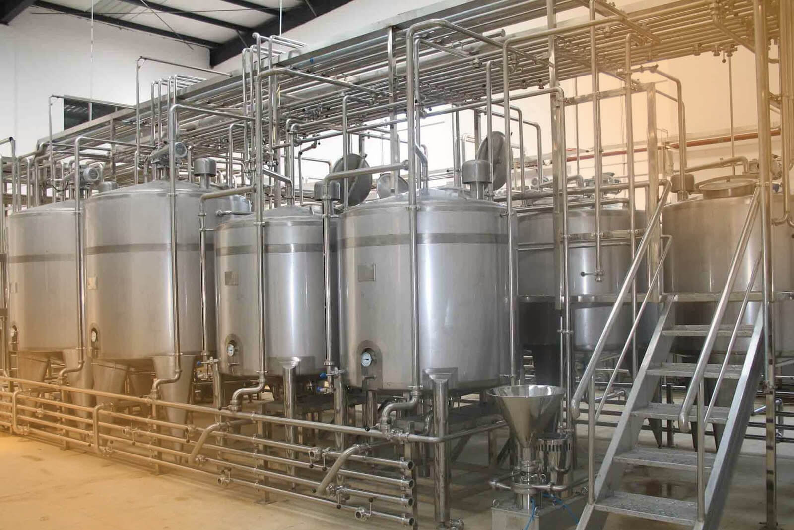 Mixing and manufacturing plant for dairy